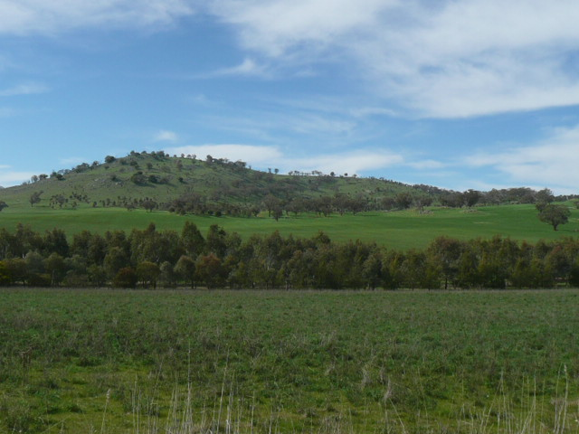 Galong Australia  City pictures : Ned Ryan's slice of Tipperary in Australia: Galong, NSW