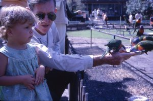 Eldest daughter with her Poppy, feeding the lorikeets.