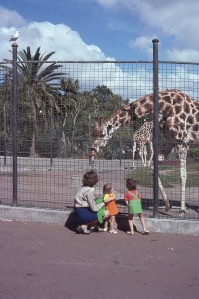 Pauleen Louisa Rach Auckland Zoo 1975
