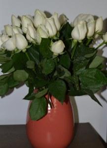 605 roses 1