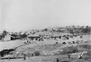 This dairy, Ozanne's, was in nearby Ashgrove but shows what must have been a similar mix of rural and urban. c1920 http://trove.nla.gov.au/work/36908896