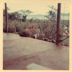 The view of Milne Bay from the relaxation area under the house, circa 1968.