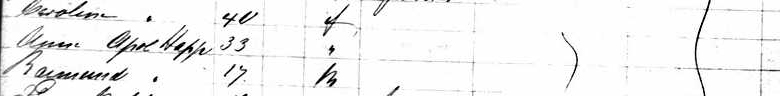 Year: 1869; Arrival: New York, New York; Microfilm Serial: M237, 1820-1897; Microfilm Roll: Roll 319; Line: 27; List Number: 1150. From Ancestry.com