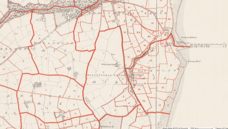 The Griffith Valuation Map 1853 for Ardamine parish, from Ask About Ireland. http://griffiths.askaboutireland.ie/