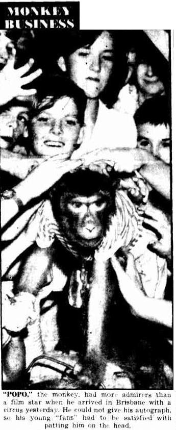 MONKEY BUSINESS. (1952, April 7). The Courier-Mail (Brisbane, Qld. : 1933 - 1954), p. 5. Retrieved September 4, 2014, from http://nla.gov.au/nla.news-article5031177
