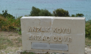 Anzac Cove DSC_0389_edited-1