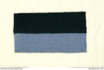 9th battalion colour patch