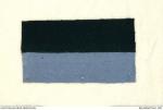 9th battalion colour patch