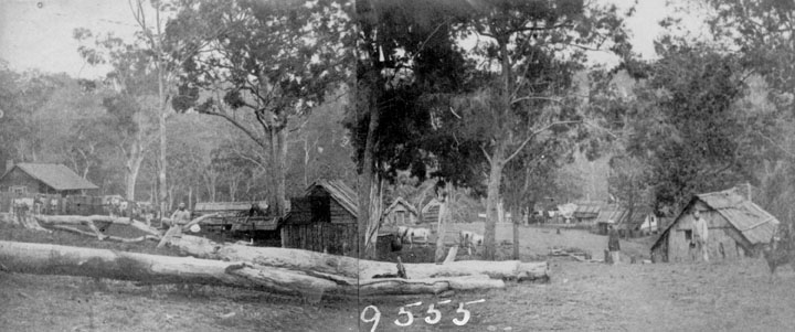 1860). Contractor's Yard, Ballard's Camp during the construction of the Ipswich to Toowoomba Railway, 1865. Queensland State Archives
