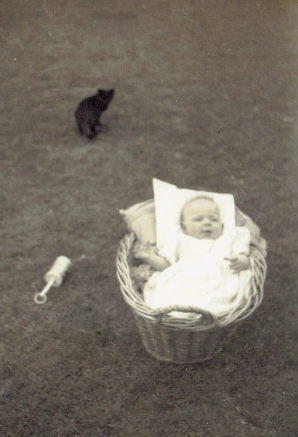 Pauleen in basket with kitten