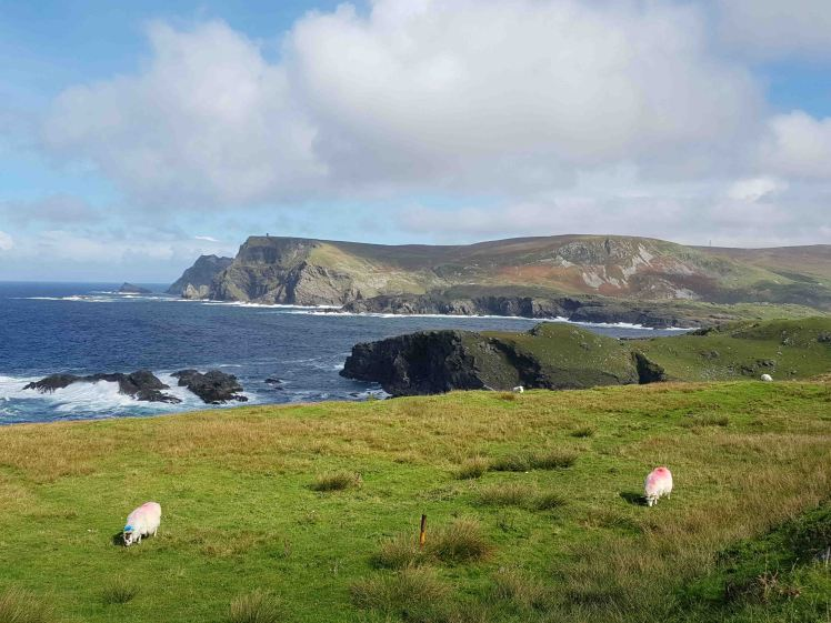 20160916_130129-donegal-view