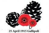 Gallipoli magnet 2015