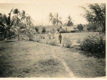 28 Cass backyard Popondetta bet 1952 and 1956