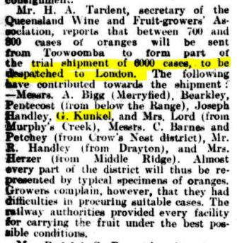 Kunkel Oranges Qlder 16 July 1904 p40