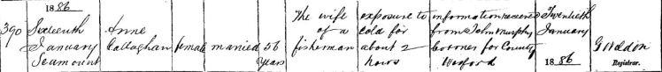 CALLAGHAN Anne Death cert 1886